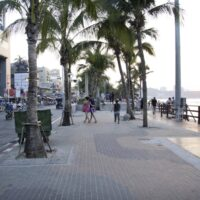 Pattaya Beach Road during the day time. Palm trees line the road and the beach runs parallel.